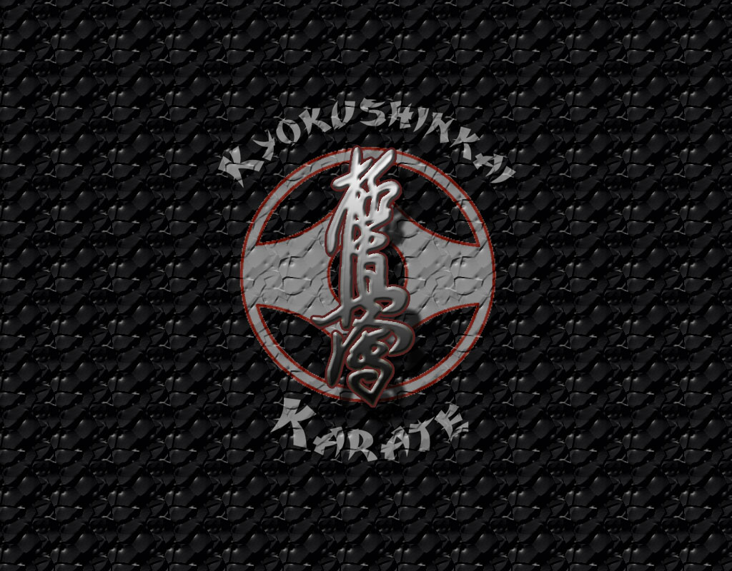 a val243di harcműv233szet � a kyokushin megalap237t225sa bety225rsereg