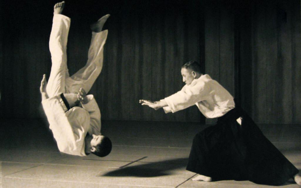 aikido-1024x640
