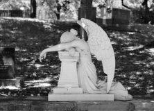 fallenangel