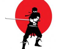 Ninja-672x372